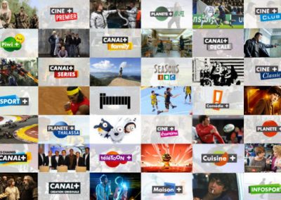 Mosaic of several channels included in Canal+ offers